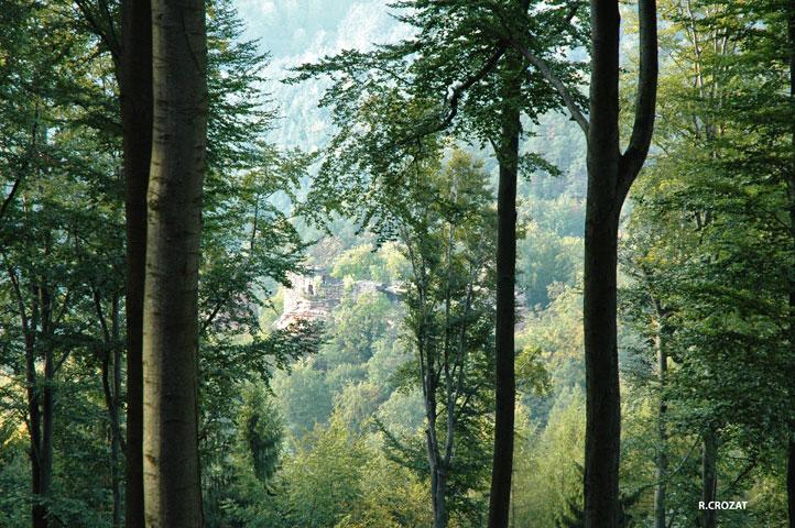 Wasigenstein France (Alsace)