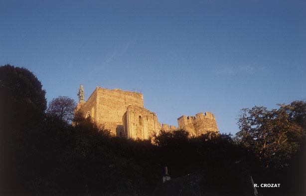 Château de Montbazon