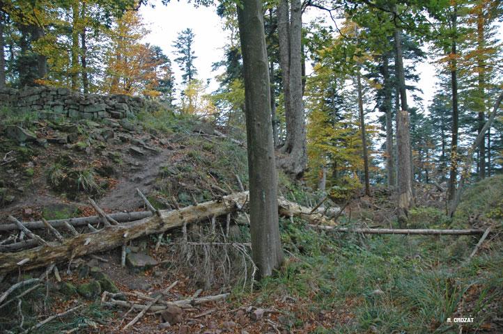 ringelstein-pt-1-R-Crozat-ruine