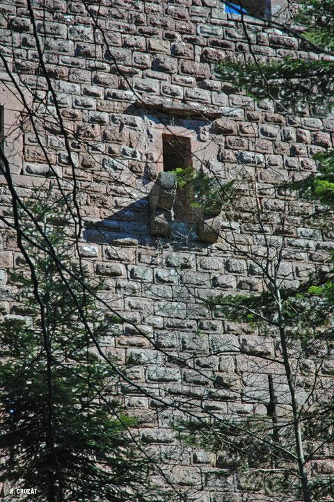 ruines-birkenfeld-R-Crozat