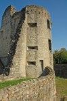 Ruines Des-cars 1 R. Crozat
