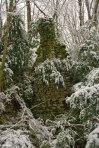 Couterrez-Marsonnay-Largillay-ruines-R.Crozat