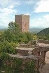 Eguisheim-ruine-R.-Crozat