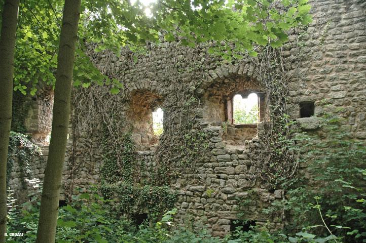 plifxbourg-ruines-R.-Crozat